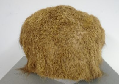 Ted Ellis' Fur Hat