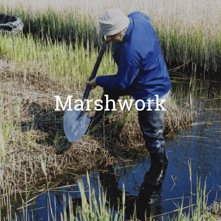 Marshwork