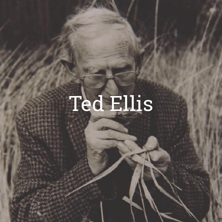 Ted Ellis